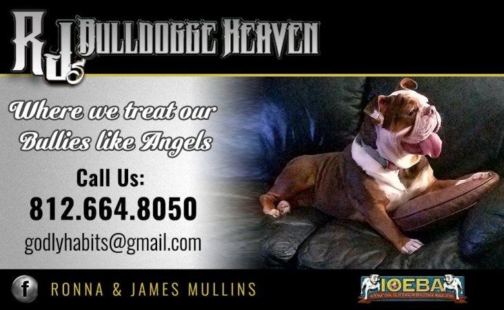 RJ's Bulldogge Heaven
