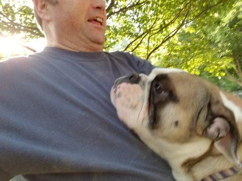 RJ'S Big Mac – RJ's Bulldogge Heaven